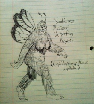 Field sketch of the Butterfly Angel